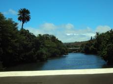 Anahulu Stream from the bridge